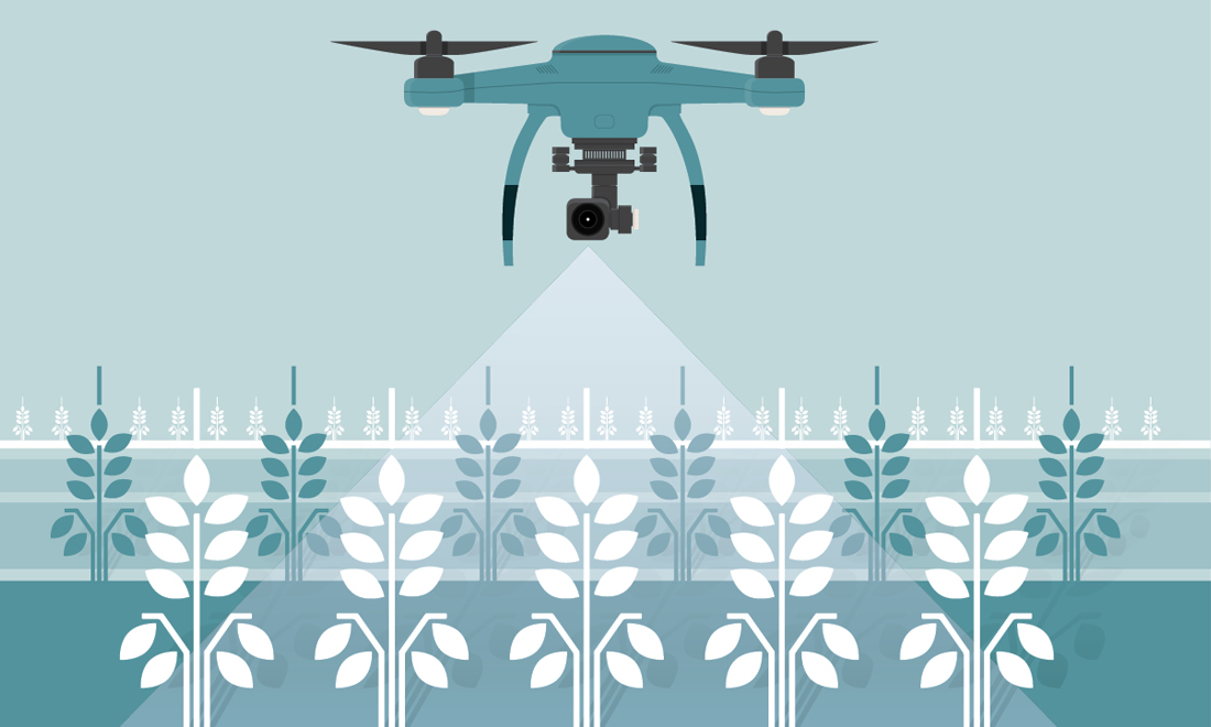 illustration of a drone monitoring crops